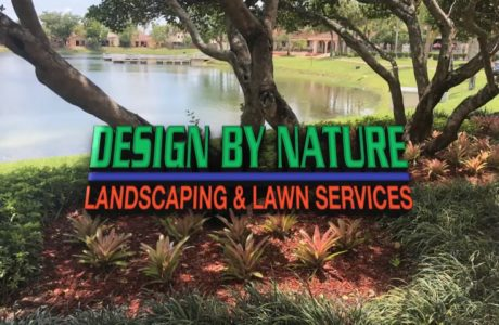 Design by Nature Landscaping and Lawn Services Promotional Video